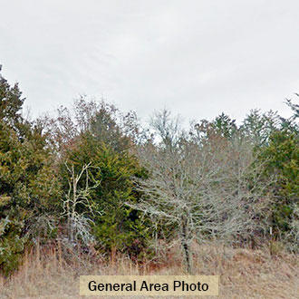 Nearly a quarter acre of treed property in Oklahoma resort area - Image 1