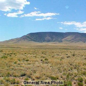 Spacious Acreage Near Rio Grande River in Southern Colorado - Image 3