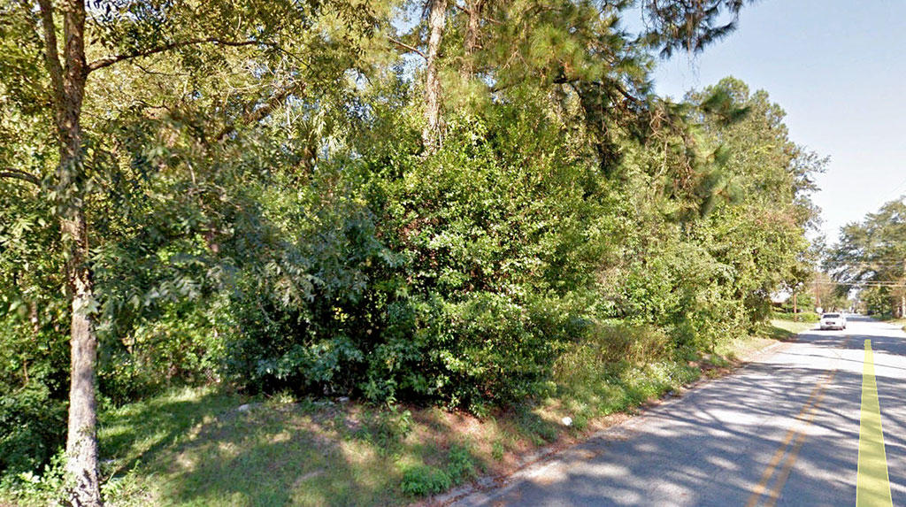 Beautiful Neighborhood Lot in Waycross, Georgia - Image 3