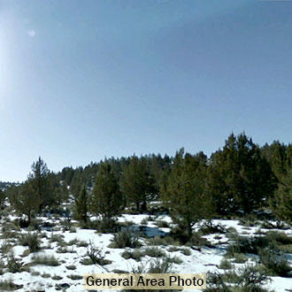 Almost an Acre in Wonderful California Outdoor Community - Image 1