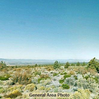 2+ Acre Rural Escape in Northern California - Image 1