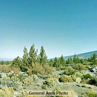 2+ Acre Rural Escape in Northern California - Image 0