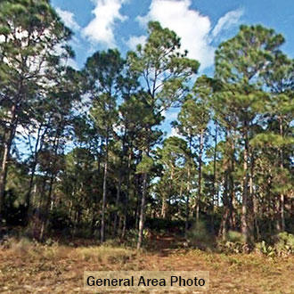Quarter Acre in Central Florida less than 3 Hours from Disney World - Image 0