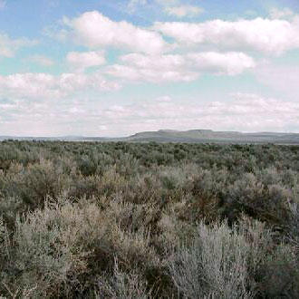 9+ Acre Farmland less than 20 minutes from Christmas Valley, Oregon - Image 1