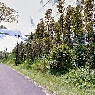 Hawaii Property in Nice Rural Neighborhood SE of Hilo - Image 1