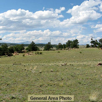 5+ acre Colorado Escape with Outdoor Recreation on all sides - Image 3
