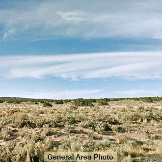 1 Acre Hideout Minutes from Interstate 40 and the Petrified Forest - Image 3
