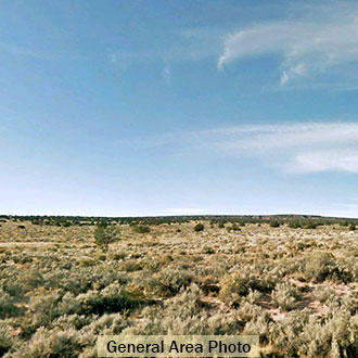1 Acre Hideout Minutes from Interstate 40 and the Petrified Forest - Image 1