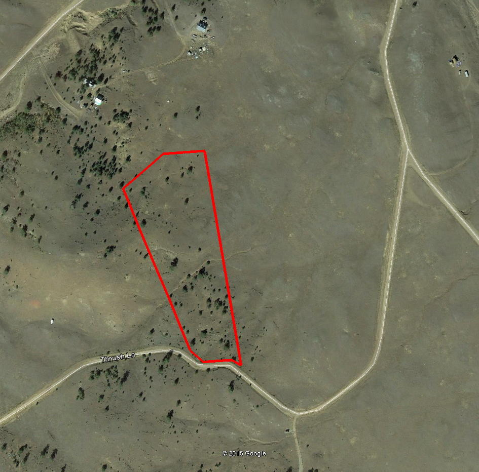 Acreage in the high county of central Colorado - Image 2