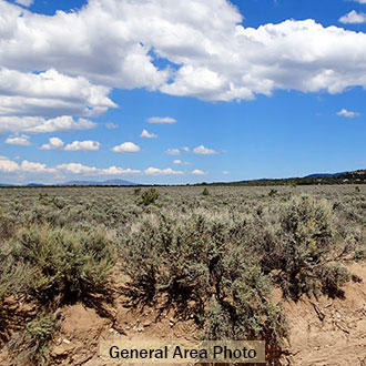 Have Fun on 5 Acres in the San Luis Valley - Image 1