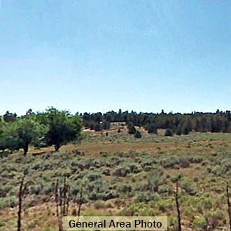 Gorgeous 2.5 Acre Escape 5 Miles from Dorris near the Oregon Border - Image 0