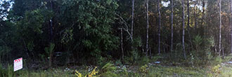Gorgeous Florida Getaway on the Panhandle