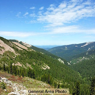 10 Acres in the Coeur d Alene  Idaho National Forest Area! - Image 0