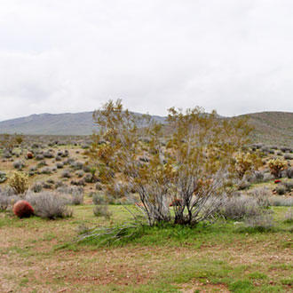 Invigorating outdoor views, just 30 miles North of Kingman - Image 2