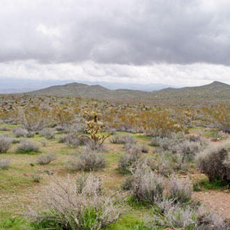 Invigorating outdoor views, just 30 miles North of Kingman - Image 1