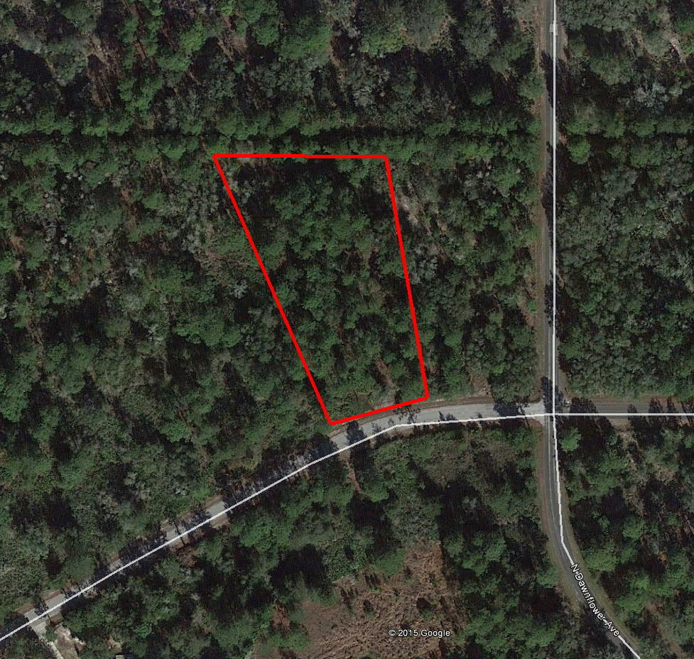1+ Acre Rural Residential Property, Near Lake and Gulf Coast - Image 1