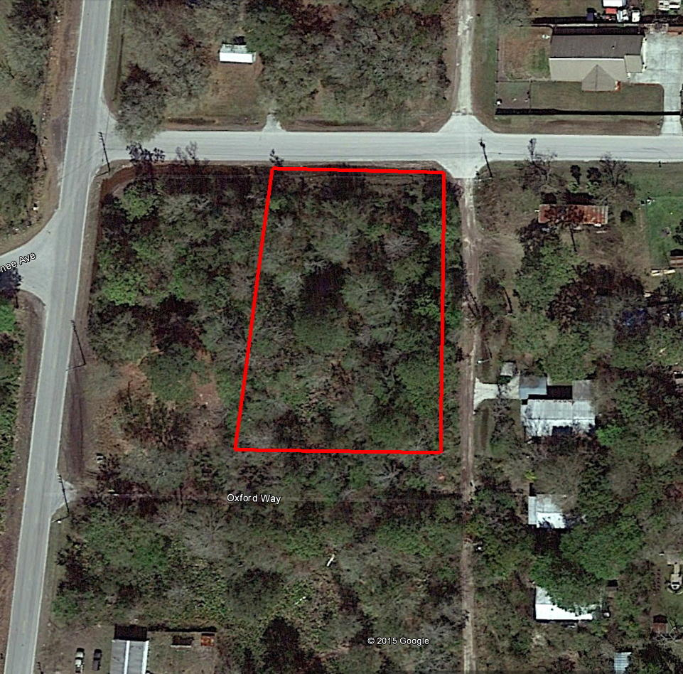 Quiet Florida Homesite, North of Tampa - Image 1