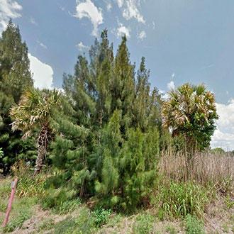 Florida Homesite in Well-Developed Neighborhood - Image 5