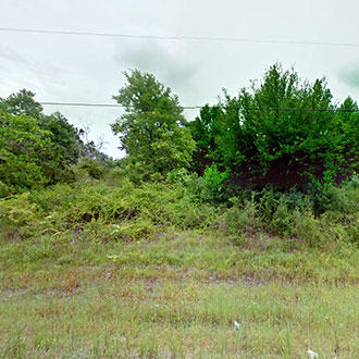 Quiet Florida Homesite, North of Tampa - Image 0