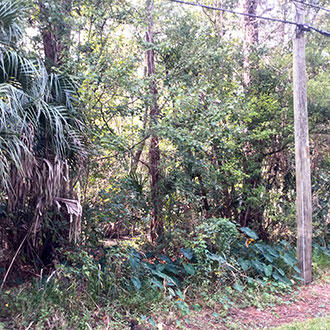 Residential Jacksonville Property, 6 miles from Downtown - Image 2