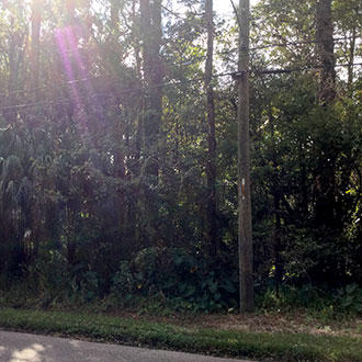 Residential Jacksonville Property, 6 miles from Downtown - Image 5