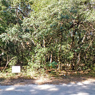 Large residential lot in great water recreation area - Image 2