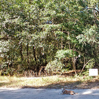 Large residential lot in great water recreation area - Image 0
