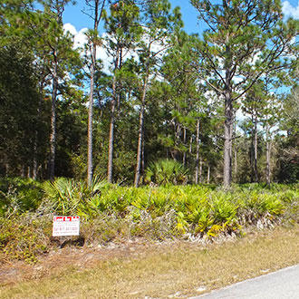 1+ Acre Rural Residential Property, Near Lake and Gulf Coast - Image 0