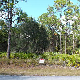 1+ Acre Rural Residential Property, Near Lake and Gulf Coast - Image 3