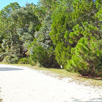 Florida Homesite Near the Gulf Coast - Image 2