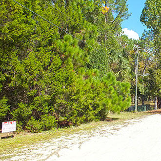 Florida Homesite Near the Gulf Coast - Image 3