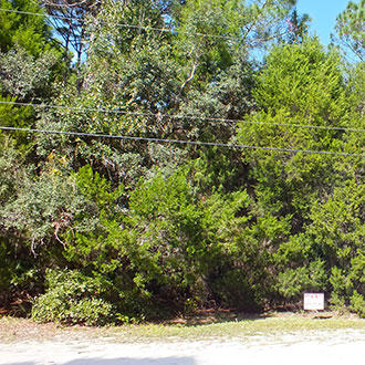 Florida Homesite Near the Gulf Coast - Image 0