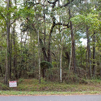 Florida Land, Great for Investment Portfolio - Image 3