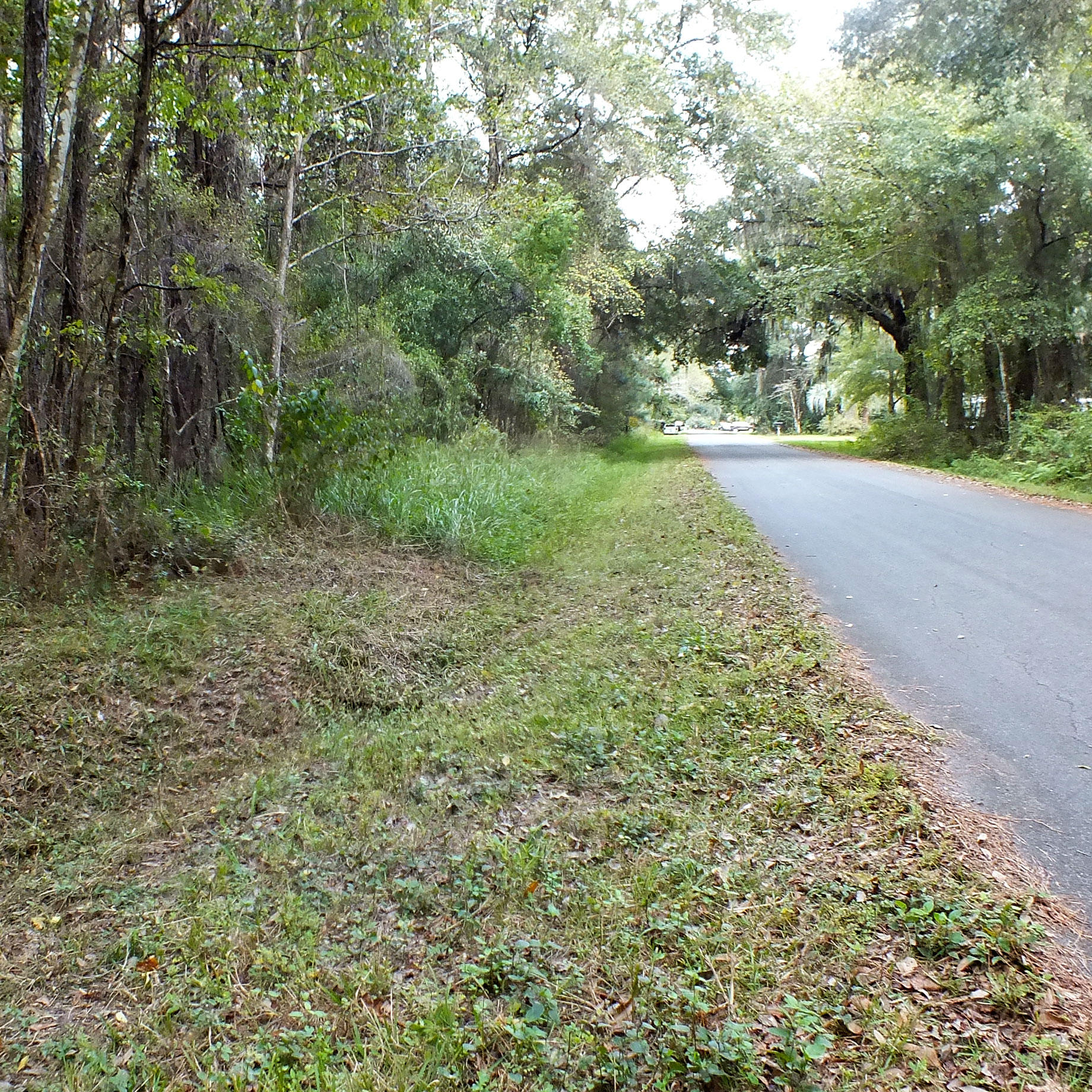 Florida Land, Great for Investment Portfolio - Image 0
