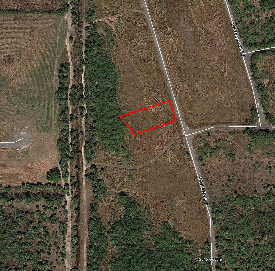 1/3 Acre Florida Treasure Only Half an Hour from the Beach - Image 3