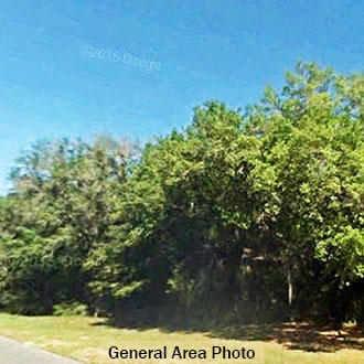 Multiple-Lot Commercial Property near the Suwannee River - Image 2