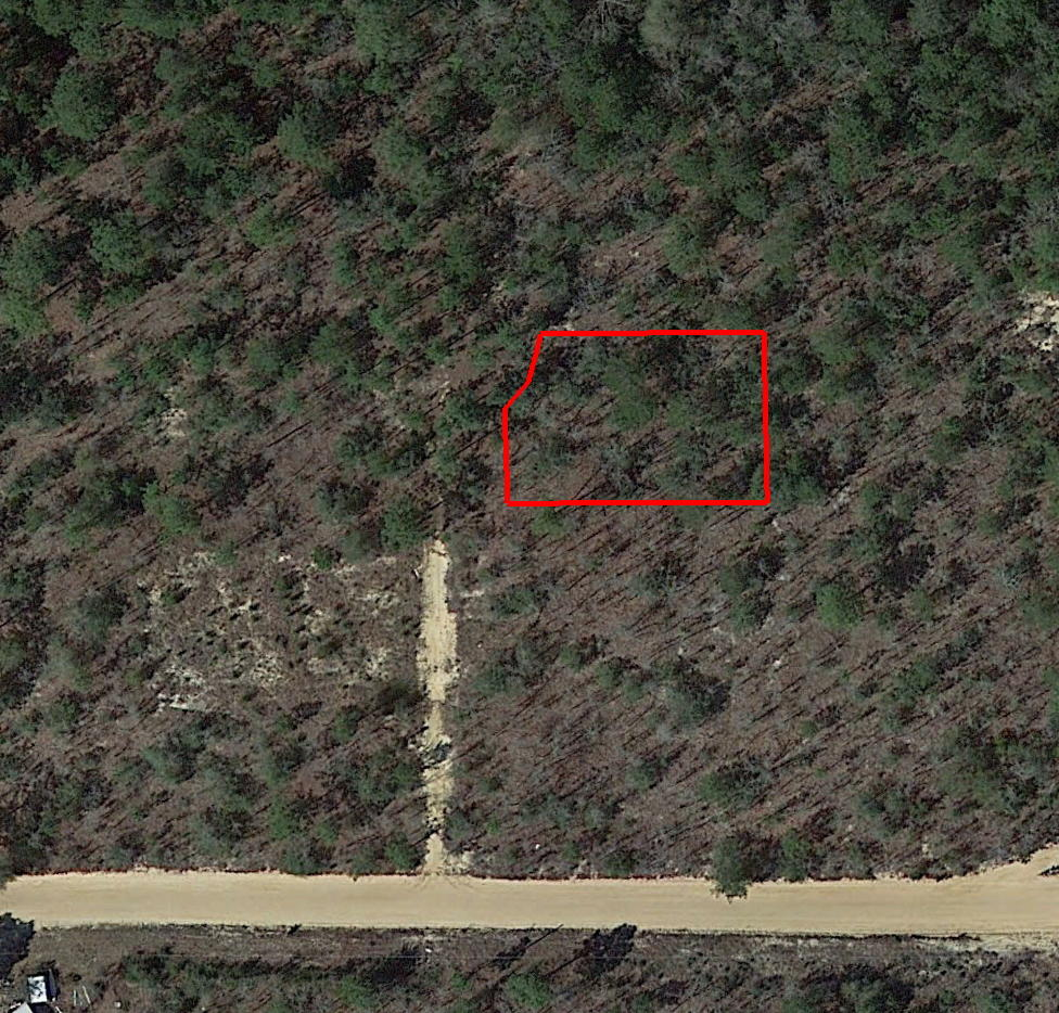 Lot at the End of Cul de sac in DeFuniak Springs FL - Image 1