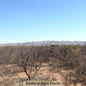 11 Acres of Flat Terrain in Culberson County - Image 0