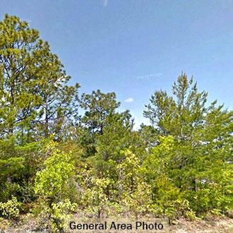 Residential Lot in Developing Community in Defuniak Springs - Image 1