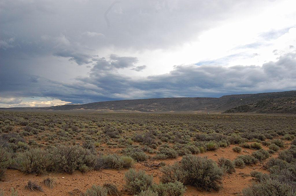 5 Acre Parcel About 13 Miles Southwest of San Luis - Image 2