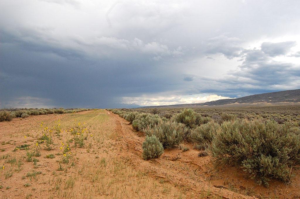 5 Acre Parcel About 13 Miles Southwest of San Luis - Image 4