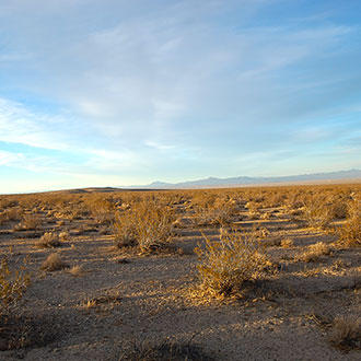 Five Acres of Land Southwest of Barstow - Image 1