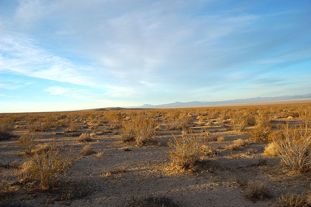 Five Acres of Land Southwest of Barstow - Image 2