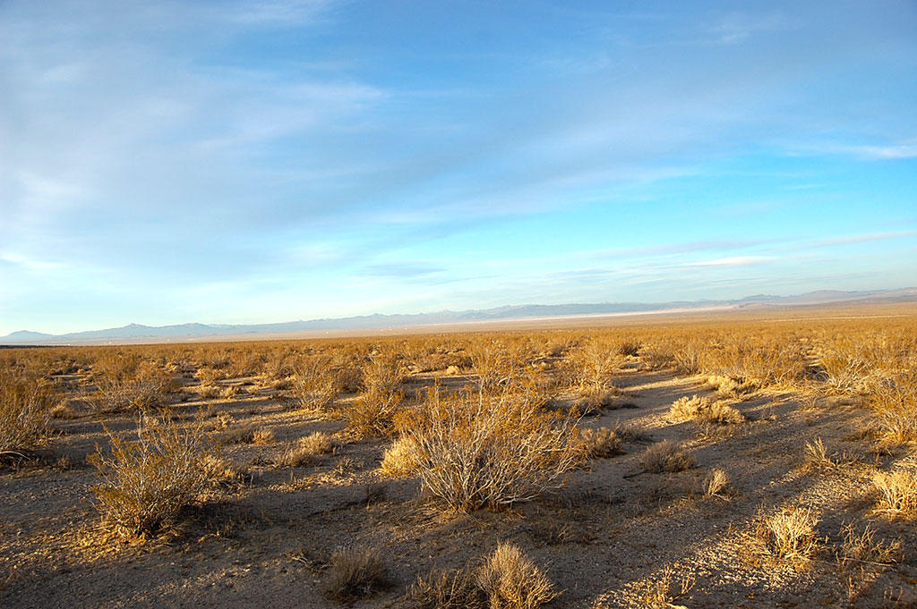 Five Acres of Land Southwest of Barstow - Image 4