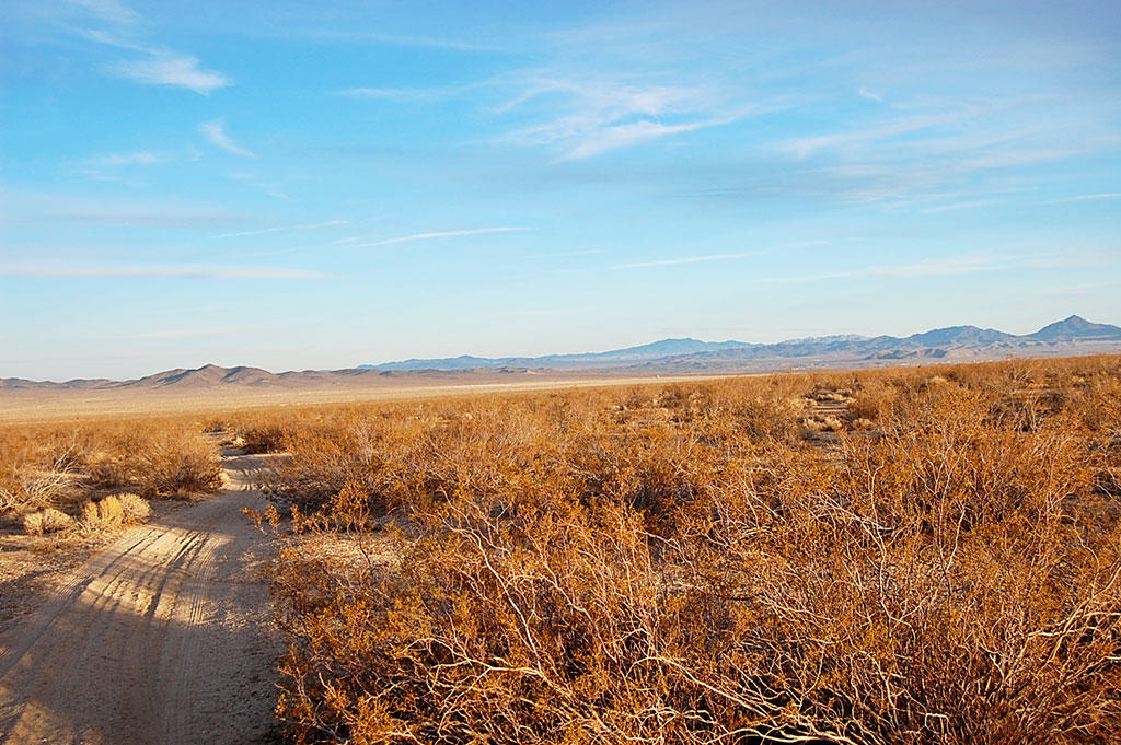 Five Acres of Land Southwest of Barstow - Image 5