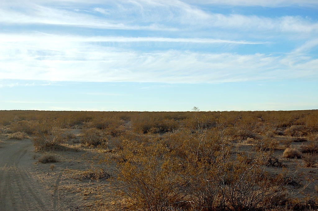 Five Acres of Land Southwest of Barstow - Image 6