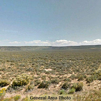 Three and a Half Acre Property about 11 Miles SW of San Luis - Image 2