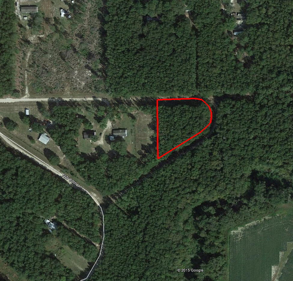 Over An Acre In Jasper Near The Alapaha River - Image 2