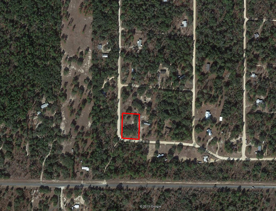Treed Lot In A Rural Residential Neighborhood - Image 1