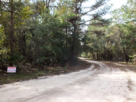 Over An Acre In Jasper Near The Alapaha River - Image 4